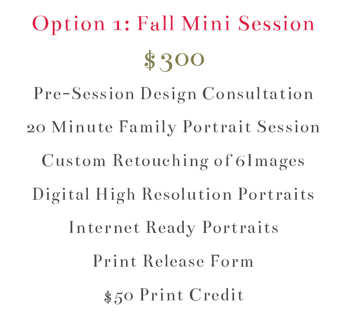 Fall Mini Promo 2017 | ©Erin D. Photography
